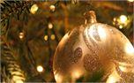 Christmas ornament (229)