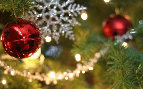 Ornaments on the Tree (687)