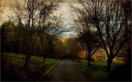 Narrow Road (1852)