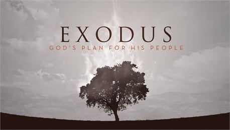 Exodus (10339)