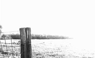 B/W Field & Fence Post