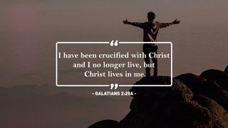 Galatians Scripture Motion