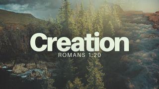 Creation (Romans 1:20)