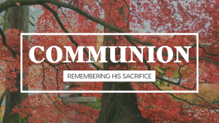 Fall Leaves Communion