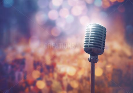 Microphone in front of crowd (100310)