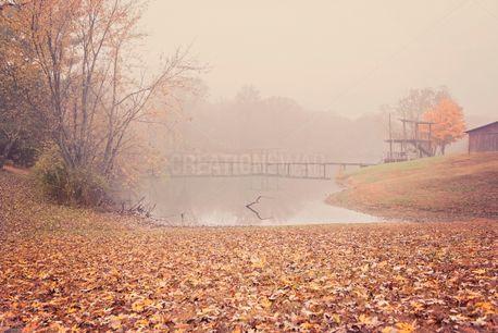 Fall / Autumn / Fog scene  (100346)