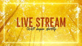 Fall Live Stream Slide