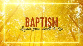 Fall Baptism Slide
