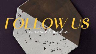 Terrazzo Tile : Follow Us