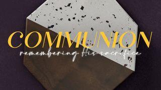 Terrazzo Tile : Communion