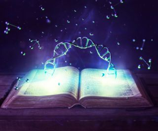 DNA and the Bible