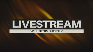 The Colors Of Fall-Livestream