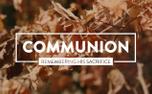 Autumn Leaves Communion (100551)