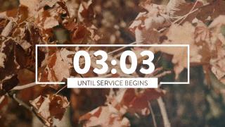 Autumn Leaves Countdown