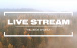 Fall Flight Live Stream (100654)