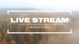 Fall Flight Live Stream
