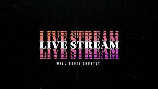 VHS Live Stream Slide