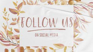 Golden_Autumn : Follow Us