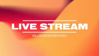 Fall Chroma Live Stream