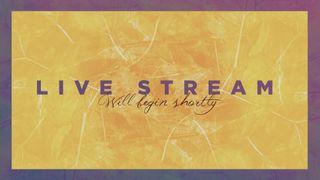 Yellow Fall Live Stream Slide