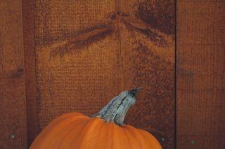 Pumpkin and Wood