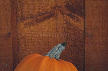 Pumpkin and Wood (100848)