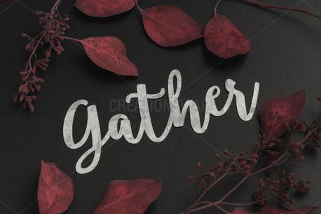 Gather Script (100851)