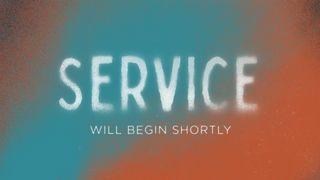 Spray Paint : Service