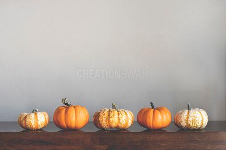 Mini Pumpkins (100928)