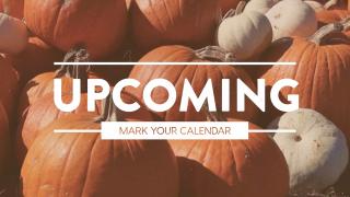 Pumpkin Film Upcoming