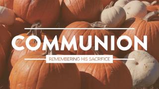 Pumpkin Film Communion