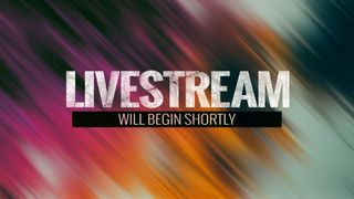 In The Fall (Livestream)