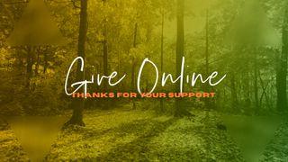 Forest Give Online Slide
