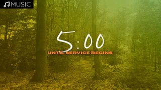 Forest 5 Minute Countdown
