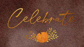 Harvest Pumpkin : Celebrate