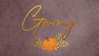 Harvest Pumpkin : Giving