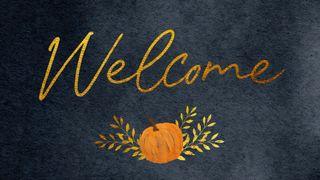 Harvest Pumpkin : Welcome