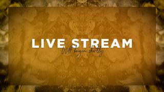 Orange Live Stream Slide