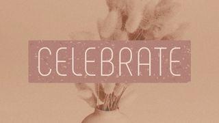 Dusty Heather : Celebrate