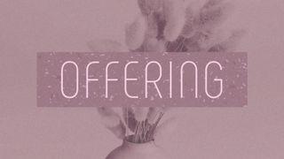 Dusty Heather : Offering