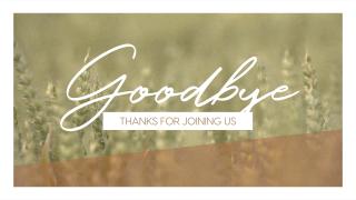 Wheat Harvest Goodbye