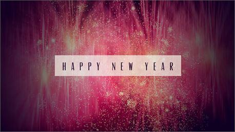 Happy New Year (11800)