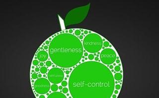 fruit of the Spirit series