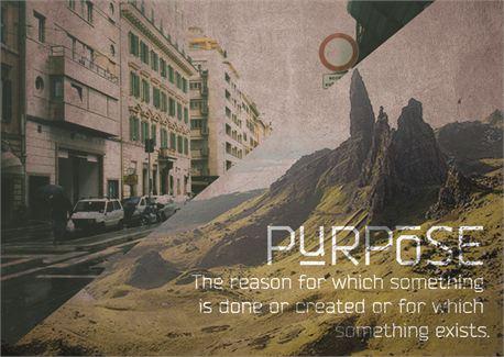 Purpose (14226)