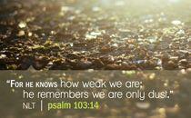 Psalm 103:14