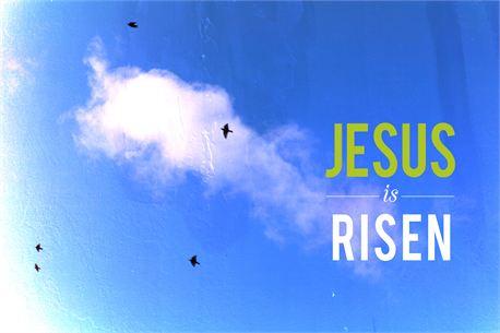 jesus is risen (14500)