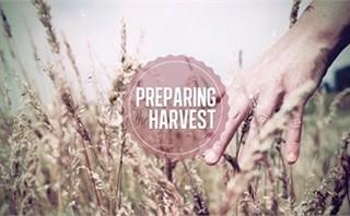 Preparing the harvest