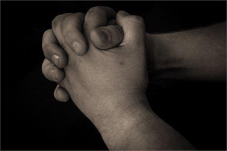 Praying Hands (15201)