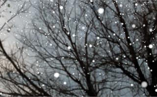 Christmas: Falling Snow