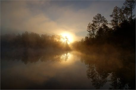 Sunrise (17341)